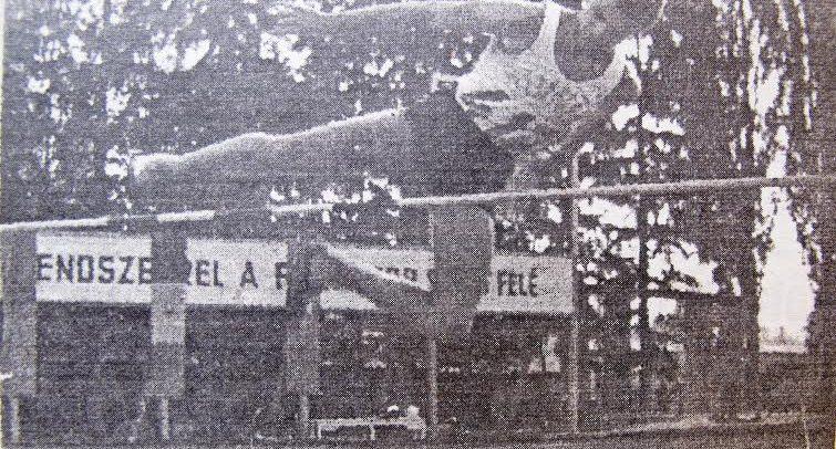 Cornel Porumb, un atlet desăvârșit