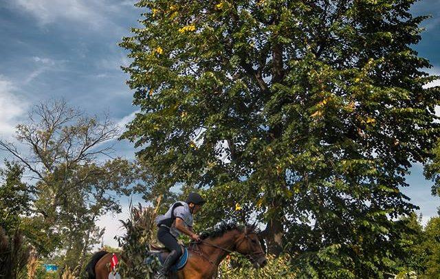 Etapă de Probă Completă la Transylvania Horse Show 2017
