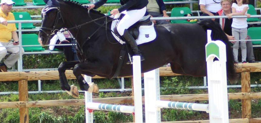 "Rezultate bune la ""Salina Equines Spring Competition"""