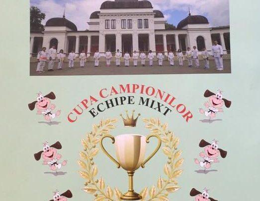 Haideți la Cupa Campionilor la judo pentru copii!