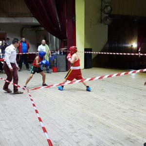 Satu Mare găzduiește finala CN pentru Cadeți