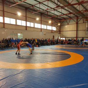 Cinci luptători universitari concurează la Cupa României