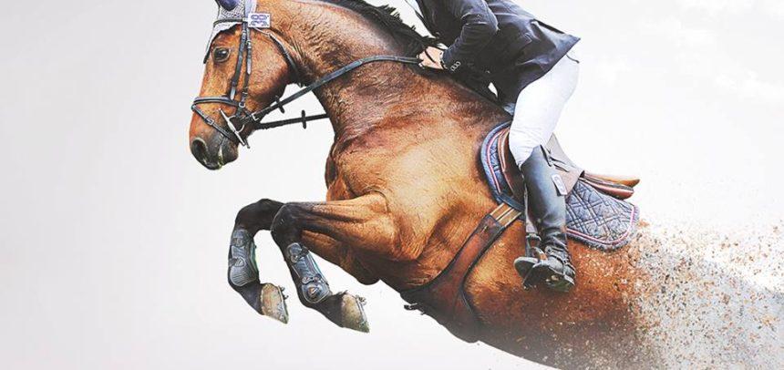 Karpatia Horse Show, ediția a V-a