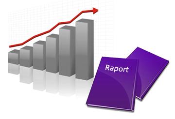 Raport de activitate
