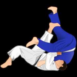 """Trei judoka de la """"U"""" la Sarajevo Junior European Cup"""
