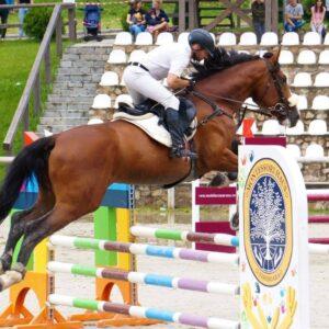 Două competiții ecvestre la sfârșitul săptămânii la Piatra Neamț