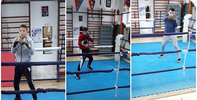 Două competiții de box la Arad